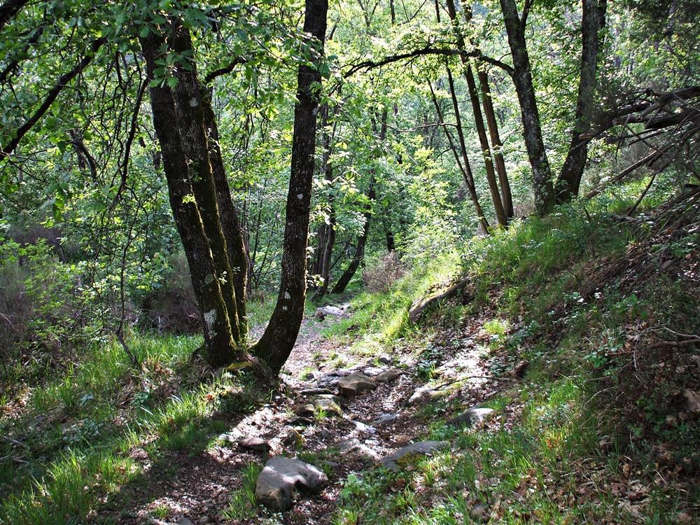 Valle Santa Brigida