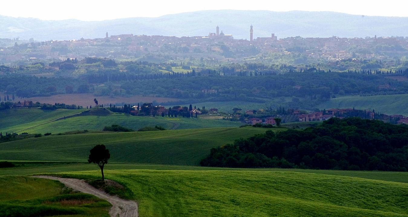 Francigena Monteriggioni Siena Miravagando