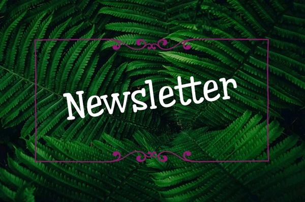 newsletter Miravagando Trekking