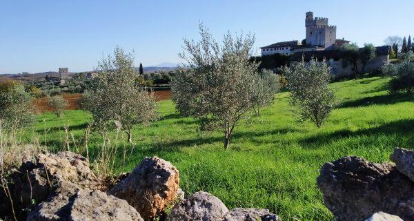 Trekking borghi incantevoli Montagnola